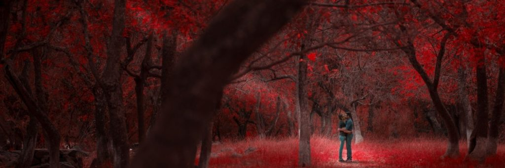 There is a couple silhouetted and kissing. The background is tinted red and is a forest.