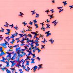 purple butterflies against a pink wall