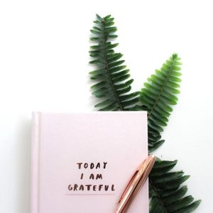 "Journal with ""today I am grateful"" on the cover, a pen, and a fern frond"