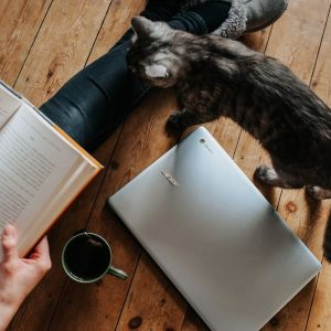 Someone sitting on a wooden floor with a book on their lap and a coffee and laptop by their side. A cat is walking toward them.
