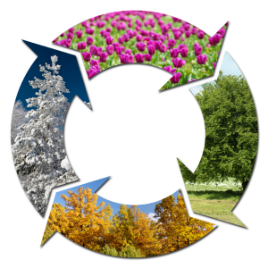 Four arrows in a circle with images depicting the different seasons.